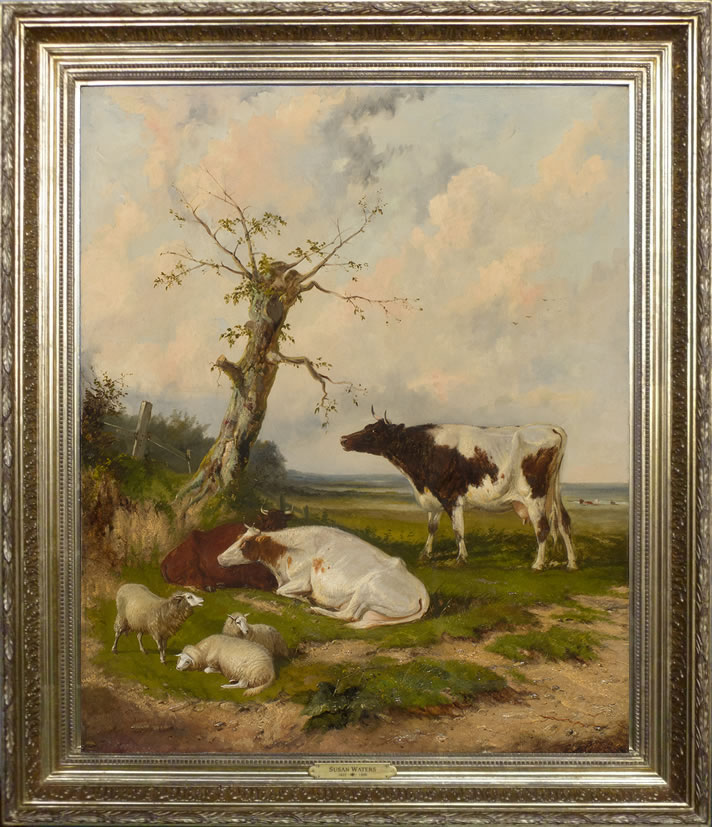 Susan Waters - Cows and Sheep